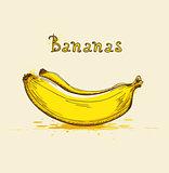 Yellow ripe bananas