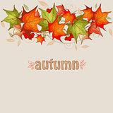 Maple leaves and red viburnum
