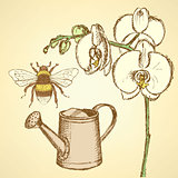Sketch orchid, bee and watering can