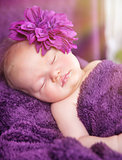 Cute newborn girl sleeping