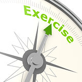 Exercise compass