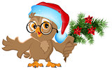 Owl in a Santa Claus hat holding a fir branch