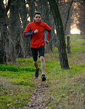 Young Man Running on the Trail in the Wild Forest