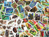 Fauna. Tanzanian postage stamps