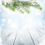 Christmas winter background with snow fir tree