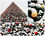 Collage of snow-covered christmas tree