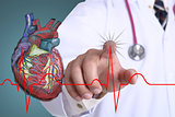 Doctor touch heart beat graph
