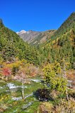 Streaming water at mountainous area in Jiuzhaigou