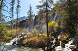 waterfall with trees at Jiuzhaigou