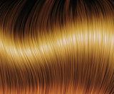 Brown hair texture
