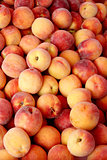Fresh organic peaches  background, photo taken at local farmers