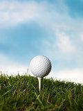 Golf Still Life