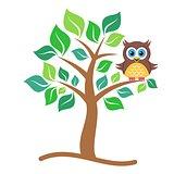 Owl on tree