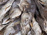 rustic chinese salted fish