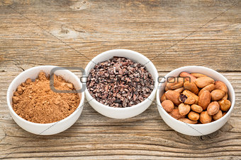 cacao beans, nibs and powder