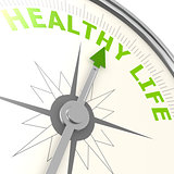 Healthy life compass