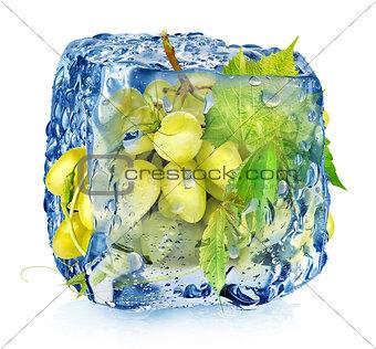 Green grape in ice cube