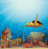 Turtle and coral reef. Underwater vector.