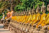 aligned buddha statues Wat Yai Chai Mongkhon Ayutthaya bangkok T