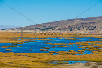 Titicaca Lake in the peruvian Andes at Puno Peru
