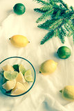 Lemons and limes with fir branch on the white background