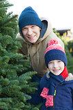 buying christmas tree
