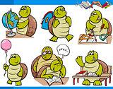 turtle character student cartoon set