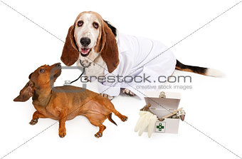 Basset Hound Dressed as a Veterinarian With a Patient
