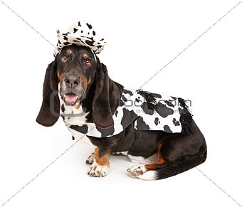 Basset Hound Dog Wearing a Black and White Cowboy Outfit