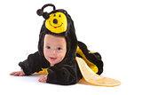 baby boy dressed up like bee