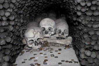 Three Skulls and Coins
