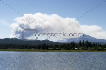 Forest Fire Smoke Close