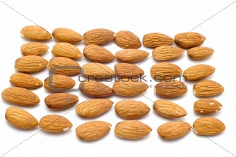 almond on white