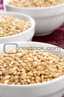 Bowls of barley