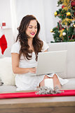 Brunette using her laptop on the couch