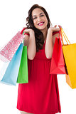 Elegant brunette in red dress holding shopping bags