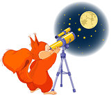 Squirrel astronomer
