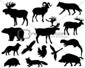 Animals of Europe