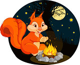 Squirrel campfire