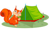 Squirrel sets tent