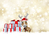 Cute Reindeer on a golden Christmas background