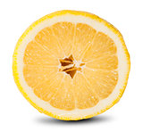 Slice Of Fresh Lemon