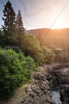 Beautiful landscape image of sunlight streaming through trees in