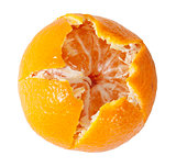 Peeled Juicy Tangerine