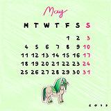 2015 horses may