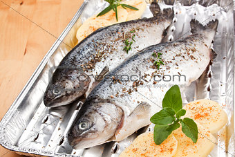 Grilling fish. Barbecue concept.