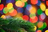Christmas Background with Fir-tree Branch on the Holiday Lights Background
