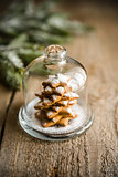 Homemade sweet Christmas tree under the glass dome