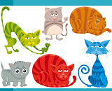 funny cats cartoon illustration set