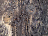 Old wooden board viewed from up close.